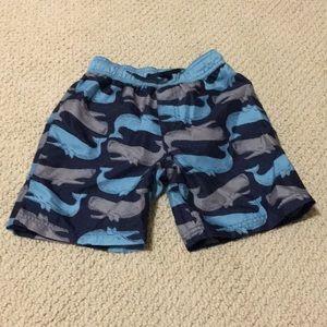 Worn Gymboree boy swim shorts with whale print